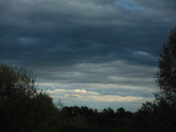 Jour d'orage en Argonne...