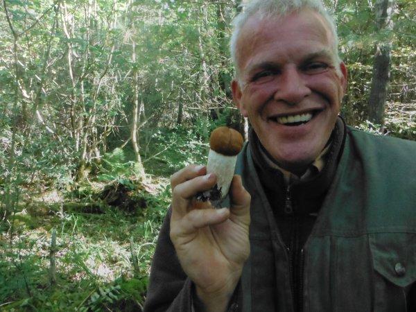 Traque aux champignons......