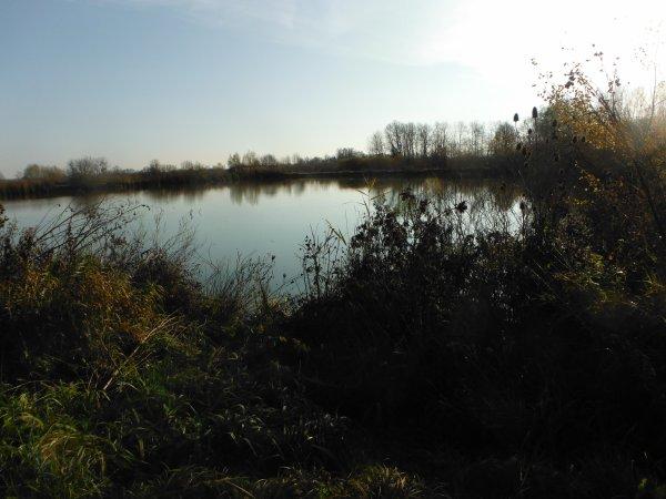 Promenade à rejoindre les étangs...