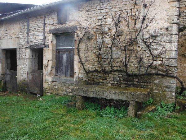 TREC en Meuse de Biencourt sur Orge