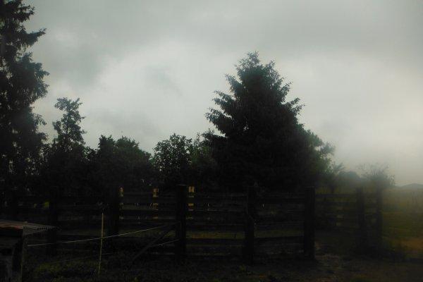 Jour pluvieux..