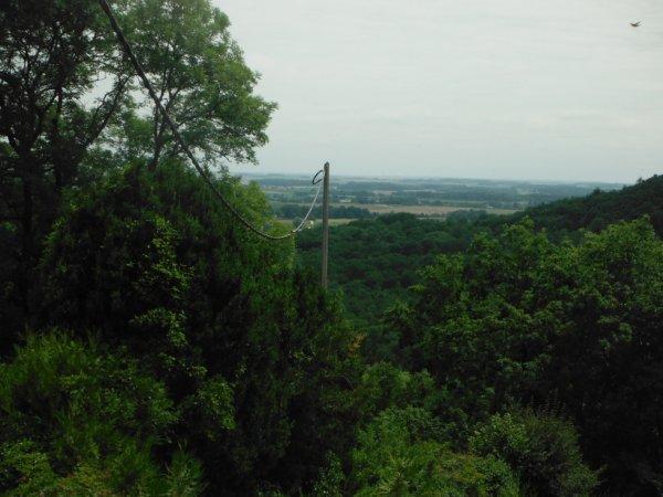 Forêt d'Argonne...
