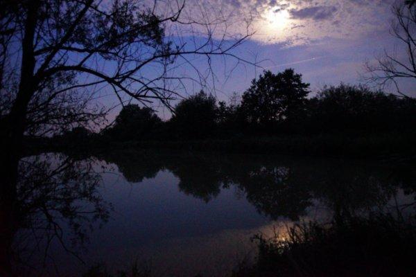 Promenade nocturne et autre