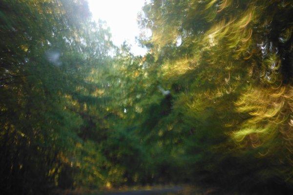 Chaleur d'automne...