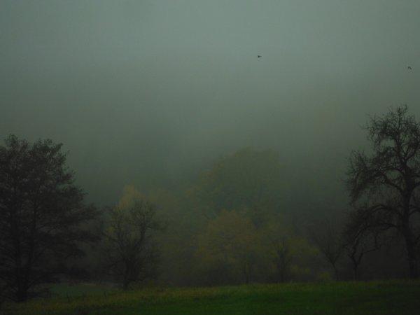 Après les pluies...Grêles aussi...