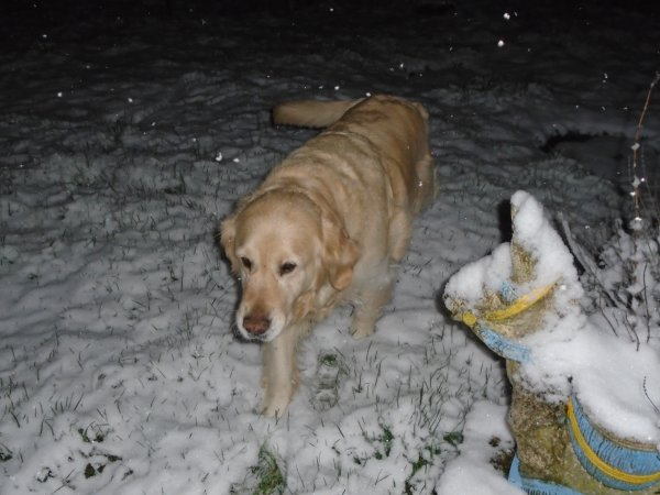 Argonne sous la neige...