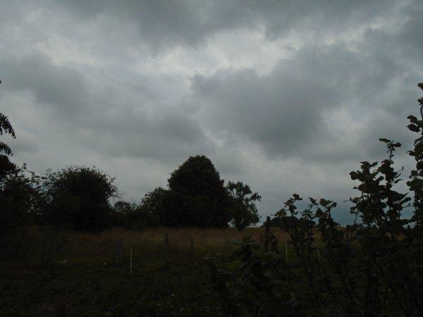 en attente des pluies...