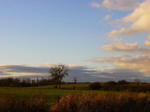 Ciel d'Argonne.