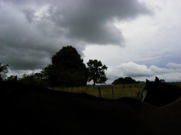 Après la pluie.