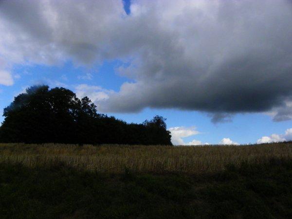 ciel du jour, nuages et vents.