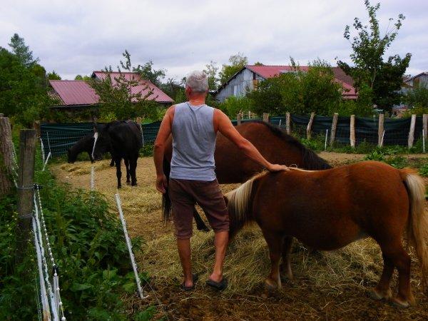 """""""SOMBARAI"""" Mathias Duplessy (album""""my mongolia"""" on Itunes)"""