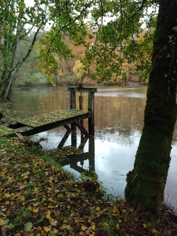 Couleurs du temps d'étangs...