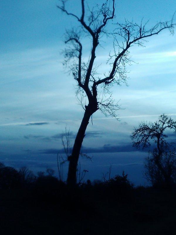 Ciel bleu et autres.