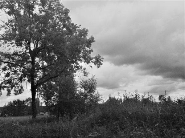 En attente des orages...