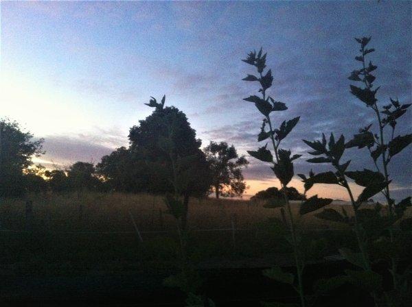 lever de soleil et autres