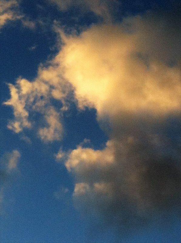 Ciel et mouettes en Argonne.