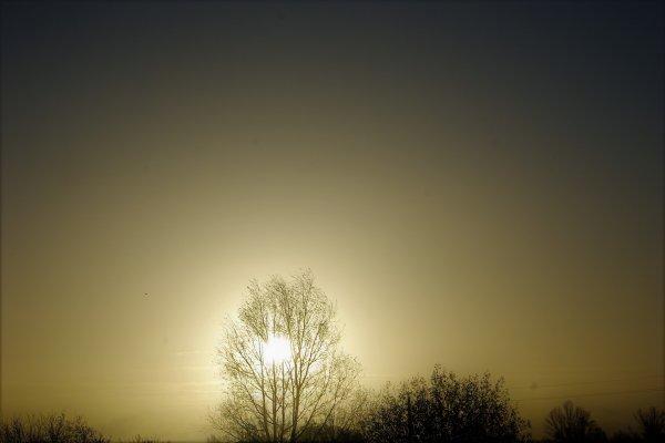 Soleil du matin.
