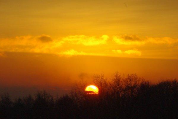 lever de soleil et gèle en Argonne.
