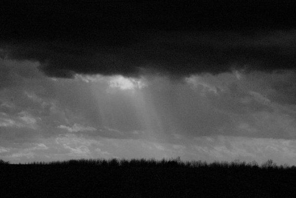 En attente des pluies.