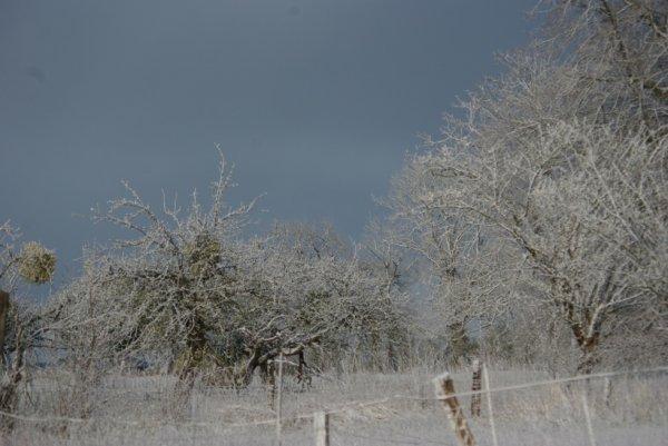 La neige encore présente.