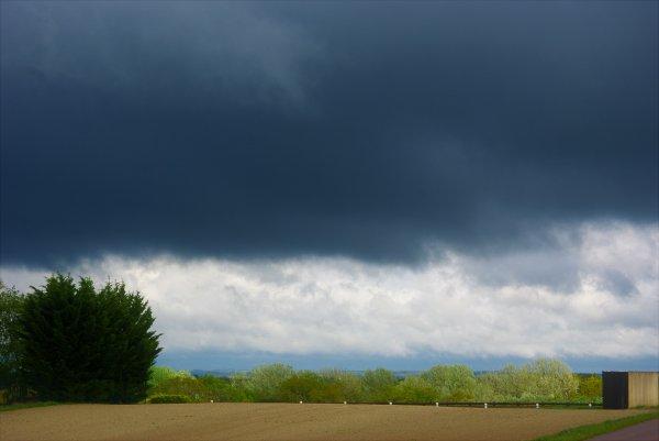 Grenouilles à l'abri, nuages de sortis.