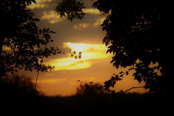 Notre coucher de soleil en Argonne et autres.