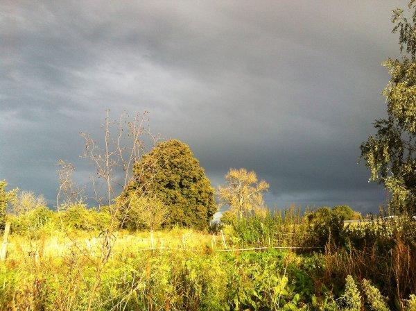 brumes et pluie mais ciel superbe