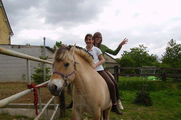 poney evasion