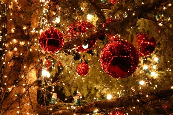 """Noël en """"famille"""""""