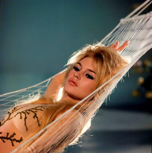 Brigitte Bardot l'avocate des animaux