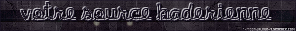 . 30/05/88 : Annulation du concert à Lyon au « Stade de Gerland » !.