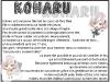 xMagicGames || Koharu || Norn9