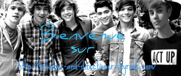 Bienvenue sur Belieber-And-Directioner