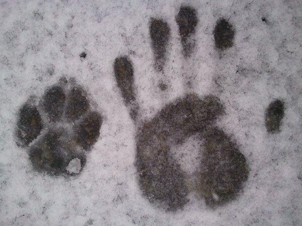 Snow pa-patte!!!