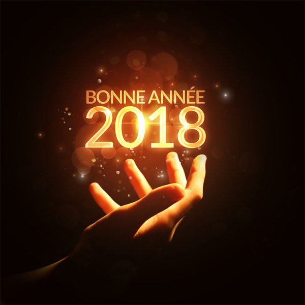 BONNE ANNEE LES AMIS