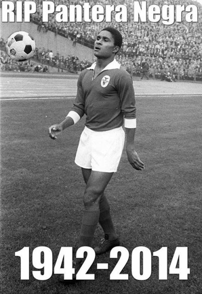 Champion Eusébio