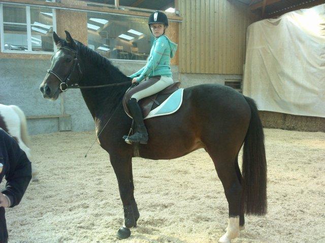 Blog de Un-amour-de-cheval-xx