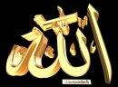 Photo de el-muslim95