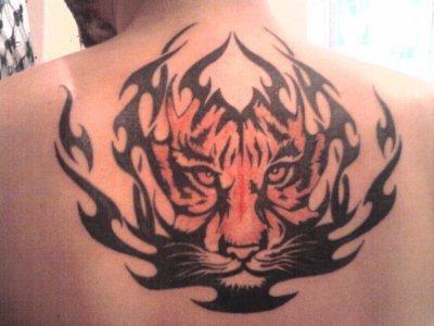 mon 4 eme tatou
