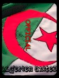 Photo de les-algerien-united