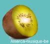 amerca-musique-be