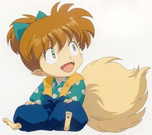 Le petit Fox