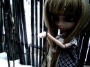 Photo de pullip-alice007