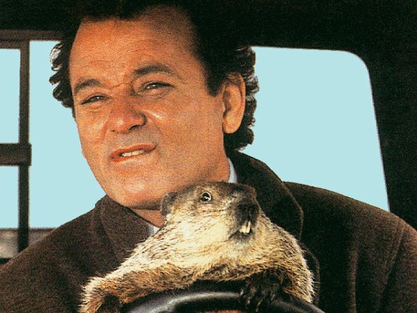 Groundhog Day 2012-2013