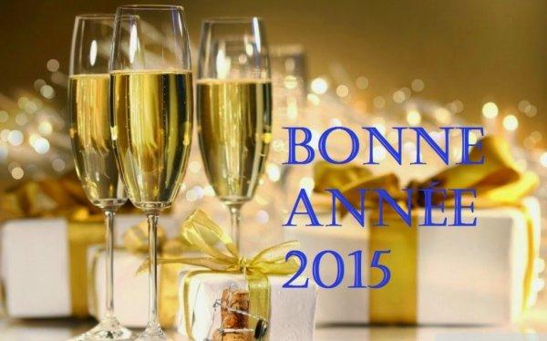 TRES BONNE ANNEE 2015 A TOUS