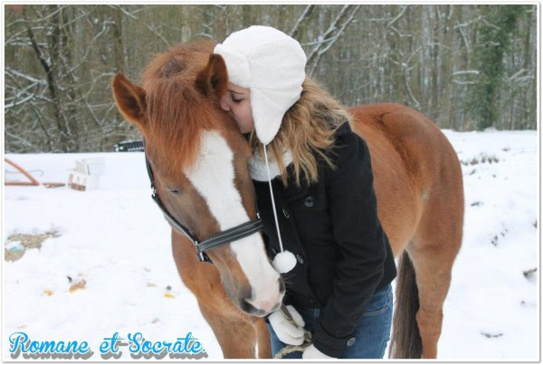 Vous pénétrez dans un royaume merveilleux, où règne un poney merveilleux.