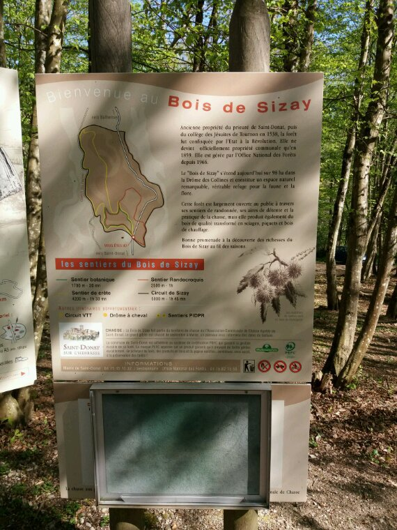 Promenade au bois de Sizay