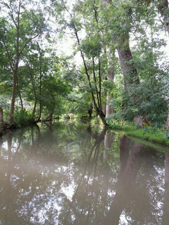 """Coulon . Marais Poitevin balade agréable au fil de l""""eau"""