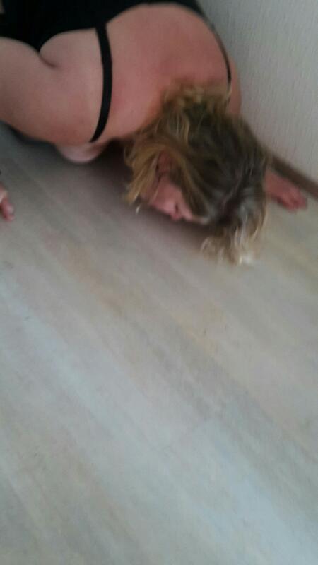 Ma chienne a mouillé le sol...