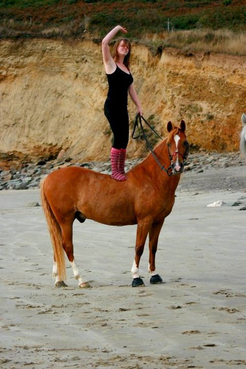 On a vu des chevaux et des cavaliers parfaitement d'accord : c'étaient assez souvent des chevaux de bois.